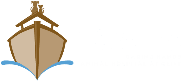 Noahs Caring Hands Animal Hospital at Geist