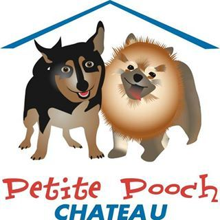 Petite Pooch Chateau